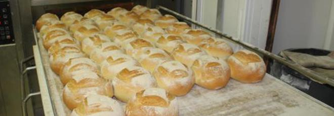 Vente de pains et pains spéciaux à Bailleul